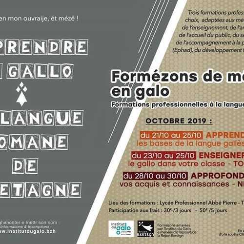 Apprendre le gallo : la langue Romane de Bretagne