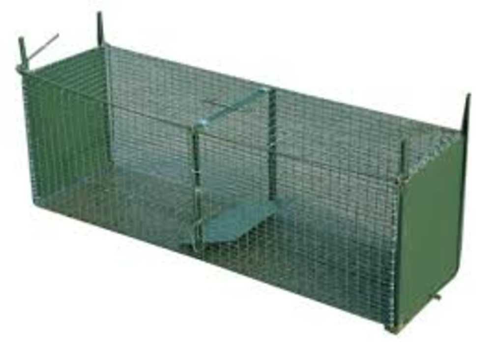Cages ragondins 0