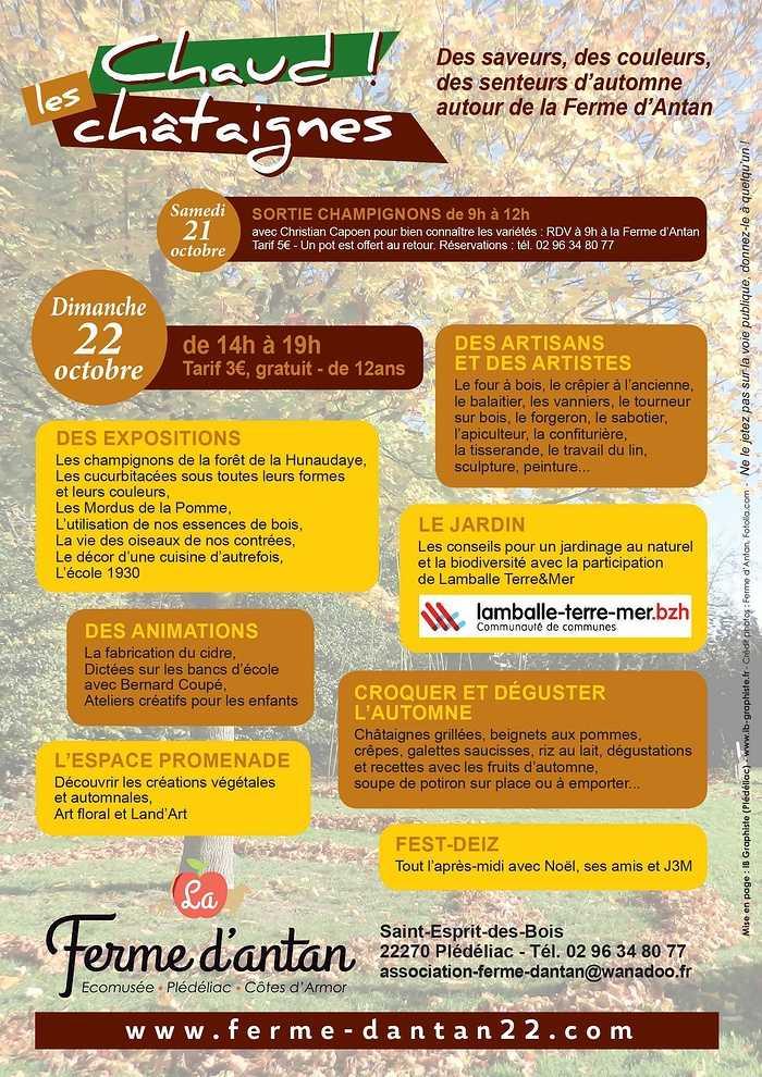 Dimanche 22 octobre - Chaud les Châtaignes ! verso-flyer-fete--chataigne-17