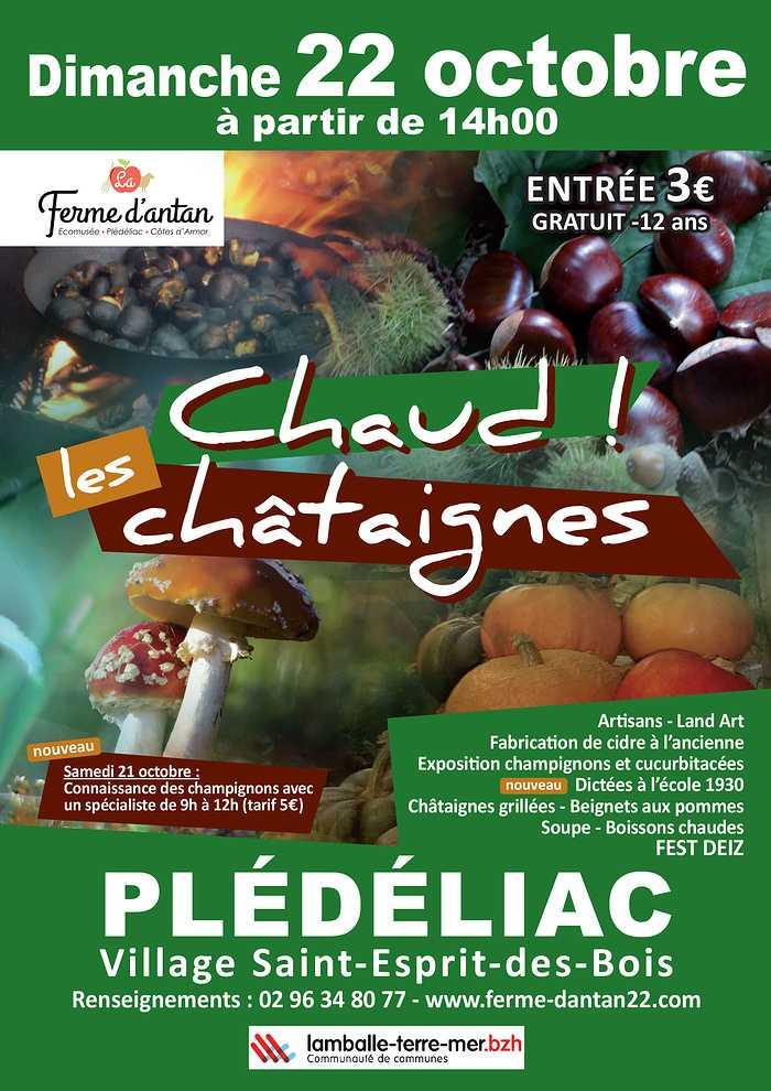 Dimanche 22 octobre - Chaud les Châtaignes ! 0
