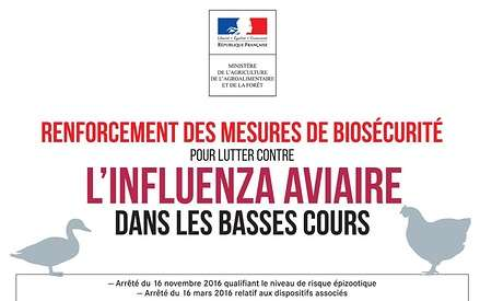 Lutte contre l''influenza aviaire 0